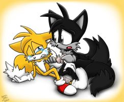.:REQUEST:. Merrick and Tails by SonicFF