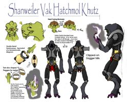 Shanweiler Ref. Sheet: RC OCT by Dracontar