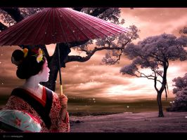 -Tears of a Geisha- by enixeffex