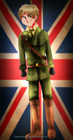APH: British Soldier by Field-Of-Roses