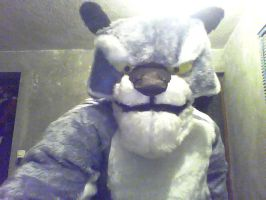 Tai-lung Cosplay + WIP7 by Gado