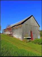 Old Barn in Fall by JocelyneR