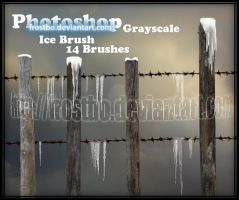 Ice Brush for Photoshop by FrostBo
