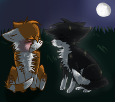 :I won't leave you alone: by Evilpaw