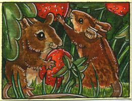 Wild Strawberries - ACEO by Dozaloz