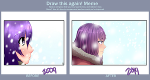 Draw This Again! Meme (Winter 2009-2014) by jecca-zn