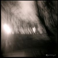 The Drive Home by fotobug8