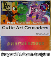 Bronycon 2014 by CutieArtCrusaders