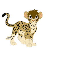 Cheetah!!! by pizzarules5