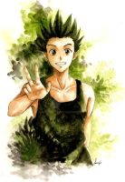 Gon Freecs : 16 yo ver by azizART23