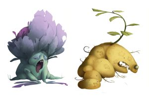 cabbage n potato by CoconutMilkyway