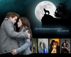 Edward and Bella by Constantine-V