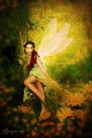 Fairy of the forest by katmary