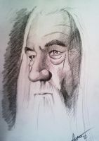 Gandalf The White by phantomphreaq