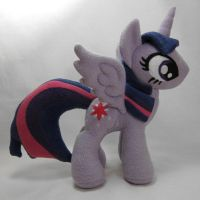 Princess Twilight Sparkle by fabricninja