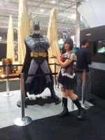 comic Con Experience 2014 - Batman by aprict