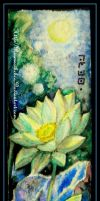 Bookmarks White lotus by Rinmeothichca