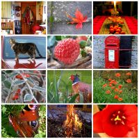 Collage rouge by gwilym