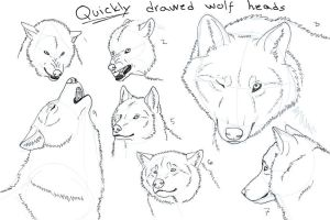 Quicky drawed wolf heads by Kuurasusi