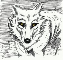 Wolf by Dovilix