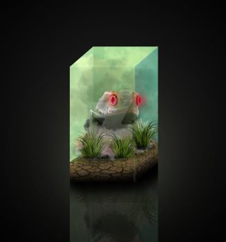 Contained Amphibian by ArtFromTheNorth