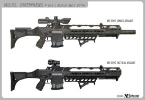 WEPS G39-C assault rifle by wiledog