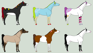 Horse Adoptables - Best Offer by Sapphira-Page