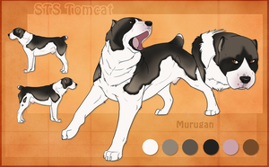 STS Dog- Murugan by ShockTherapyStables