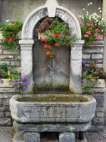 Switzerland -Well With Flowers by AgiVega