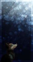 ::Starry.Eyed:: by Miss-Smutty