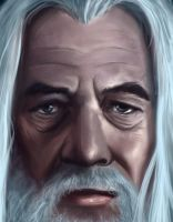 Gandalf: Detail by ReneAigner