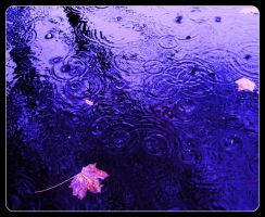A Melody of Raindrops. by Akhenaten-Aten