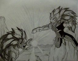 ssj3 goku vs ssj3 vegeta done by rondostal91