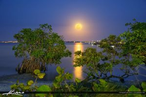 Jensen-Beach-Moon-Rise-at-Indian-Riverside-Park-Ma by CaptainKimo