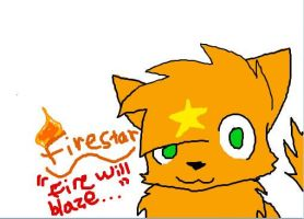 Firestar and prophecy by Emmie-Kat