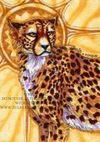 ACEO Sun King by ZulayaWolf
