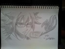 Fairy Tail Leo Loke by dj216