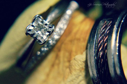 Rings by Pammiesphotography