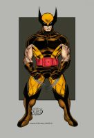 Wolverine Quick Colors by statman71