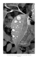 raindrops keep fallin' by Scooly