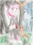 Amy The Vampire and his Werehog by CAPTAIN-CHETO
