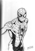 Amazing Spider-man by hdub7