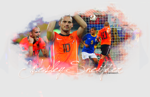 wesley sneijder by baboesch