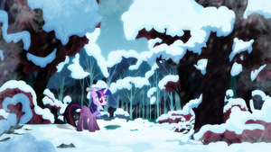 A Tranquil Winter by SPltFYre