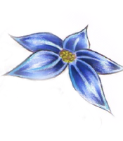 Blue Daisy with Yellow center by mpenckofer