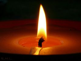 Candle by Evicas