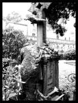 The lady of the graveyard by CisneNegro