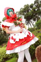 Voca Red Riding Hood - Miku by Xeno-Photography