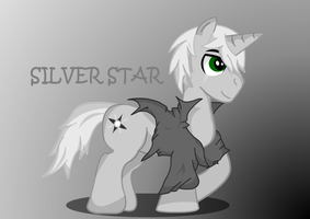 Silver Star by RaineArtz