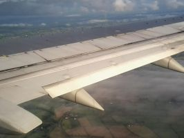 detailed plane wing 2 by haileysthelimit